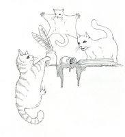 Sky Kitten Chaos