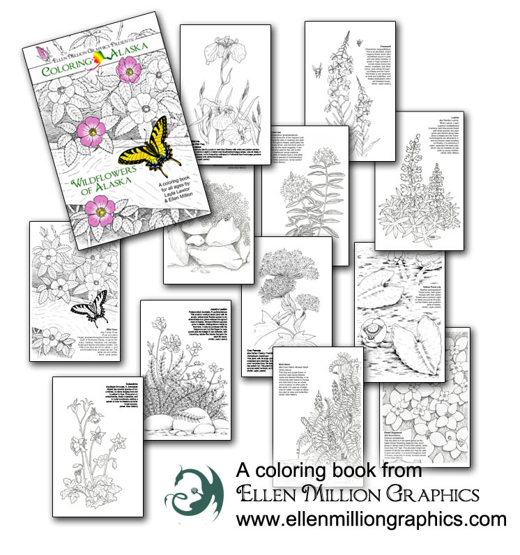 Ellen Million Graphics Fantasy Art Projects Coloring Books For Adults And More