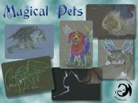 Magical Pets